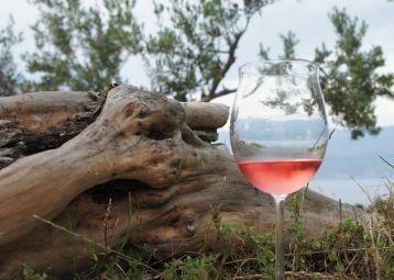 Wine tasting, island Brač